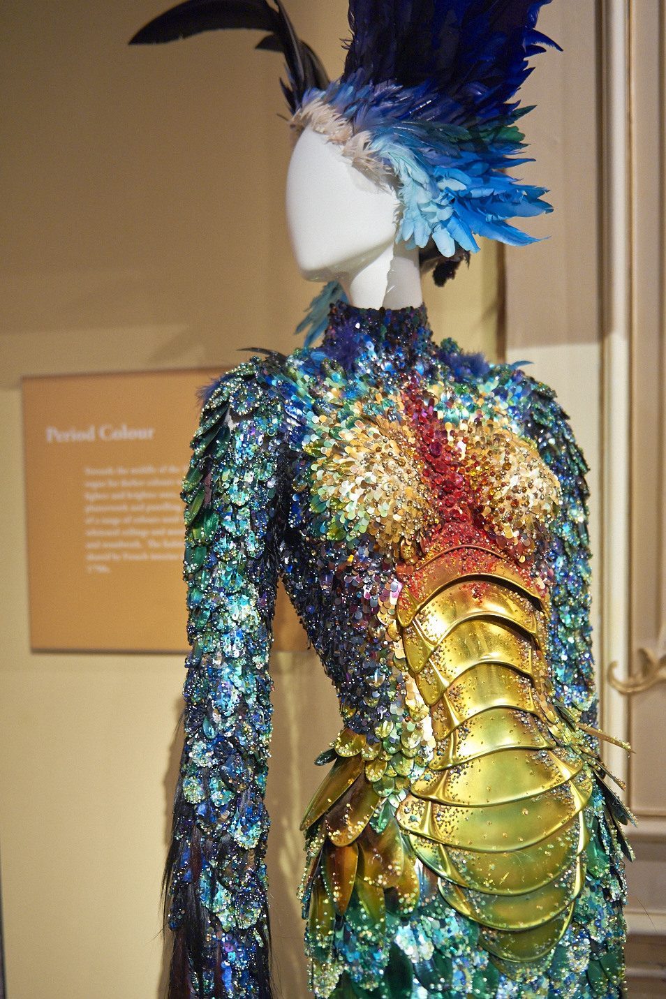 birds of paradise plumes feathers in fashion margot hesse
